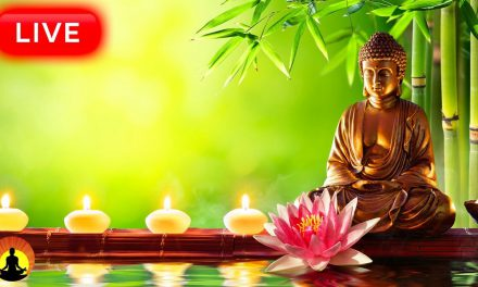 Relaxing Spa Music 24/7, Healing Music, Meditation Music, Stress Relief